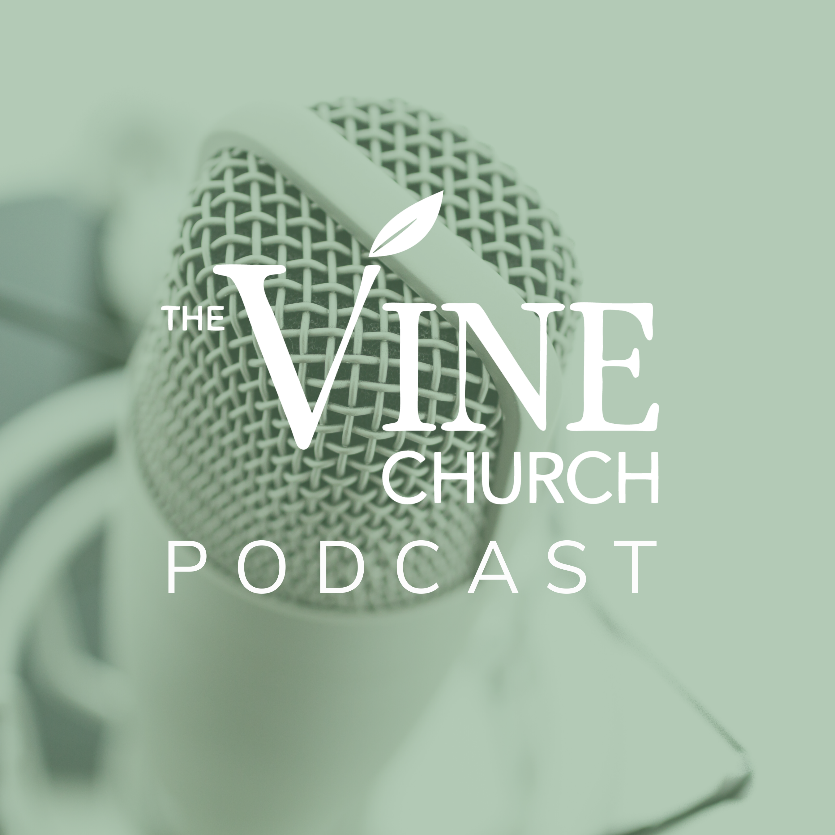 Why Should The Vine Church Care About Church Planting?